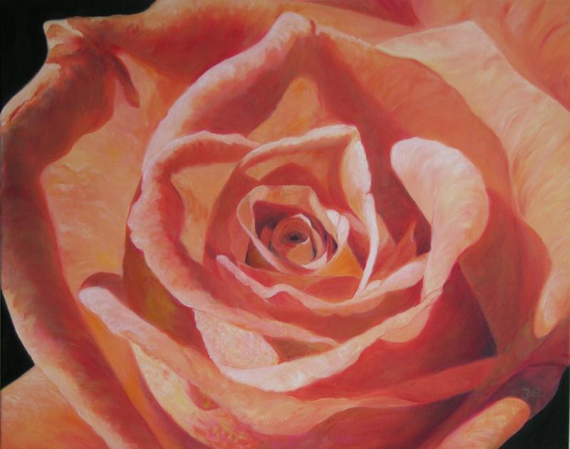 roseorange4479tif