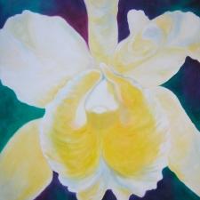 orchid-whitecattleya11