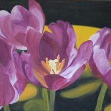 tulipsmagentafour