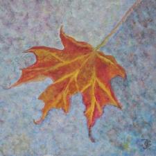 maple-leaf-5