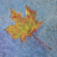 maple-leaf-6